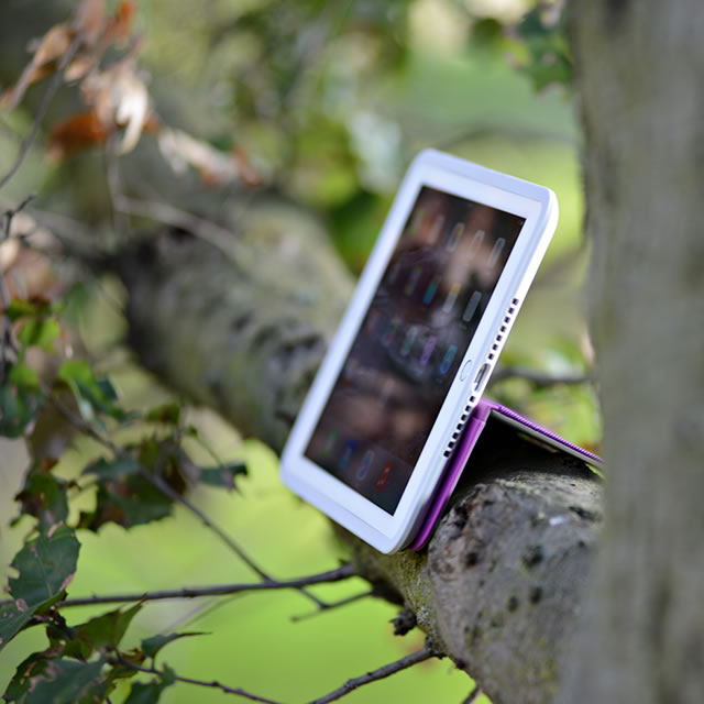 Logitech AnyAngle iPad case on the tree branch
