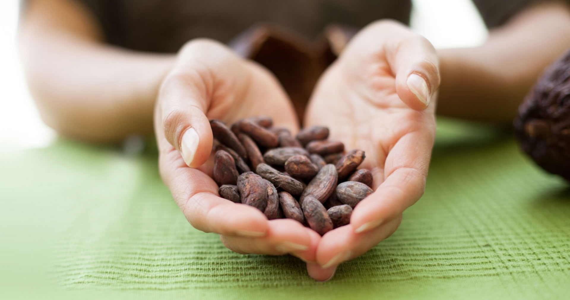 The Chocolate Garage cocoa beans