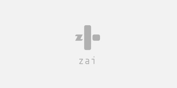 zai_logo